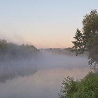 утро на реке :: Александр С.
