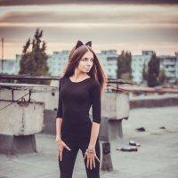 котэ4 :: Анастасия Переплетова
