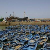Ессувейра :: Светлана marokkanka