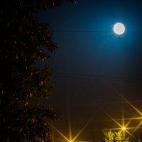 Ночь. Улица. Фонарь. :: Артём Аристов