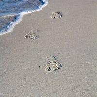 Прогулка по пляжу :: Александр Буслов