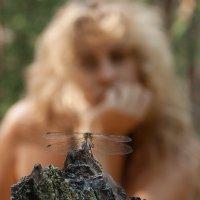 Dragonfly Summer. :: krivitskiy Кривицкий