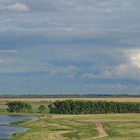 Степное озеро :: Виктор Четошников