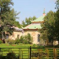 Взгляд на Китайскую деревню.... :: Tatiana Markova