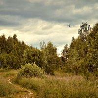 Одинокой судьбы принимая каприз :: Ирина Данилова
