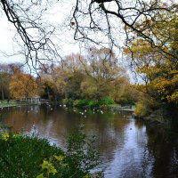 Дублинский парк. :: zoja