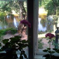 Старая Русса. Дом Достоевского. Вид из окна :: Наталья