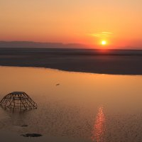 Тунис Соляное озеро пустыня :: Михаил Киселев