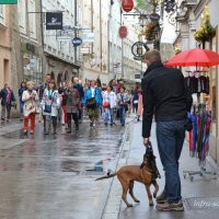 Зальцбург, на главной пешеходной улице Гетрайдегассе :: Lüdmila Bosova (infra-sound)