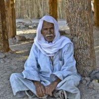 Бедуин :: Ирина