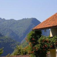 Montenegro :: Maria Bushko