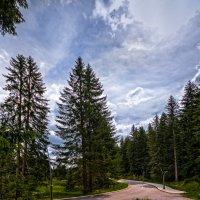 Дорога к Черному озеру, Дурмитор, Черногория :: Игорь Иванов