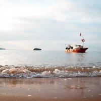 Волна :: Алёна Карякина