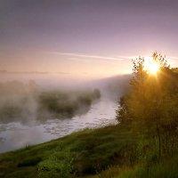 Здравствуй,солнце! :: Валерий Талашов