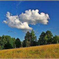 бегущее с горы :: Дмитрий Анцыферов