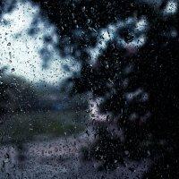 дождь :: Мария Данилейчук