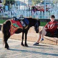 мальчик с лошадью :: Кэтрин Ли