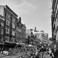 Амстердам :: Наталия Миронова