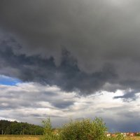 Тучи сгущались над Абрамцевым, но лишь пугали IMG_7236 :: Андрей Лукьянов