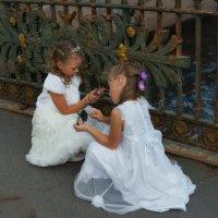 Будущие невесты :: Цветков Виктор Васильевич