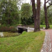 Прогулка в парке :: Liliya Kharlamova