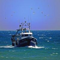 Рыболовное судно.. :: ФотоЛюбка *