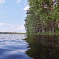 На озере. :: MEXAHNK НИКОНОВ