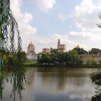 Новодевичий монастырь :: Виктор Рожко