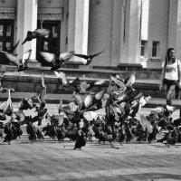 Мальчик и голуби :: Дмитрий Бабаев