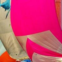 яркие краски старта :: Ingwar