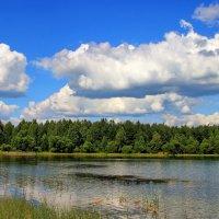 В память проплывали облака... :: Лесо-Вед (Баранов)