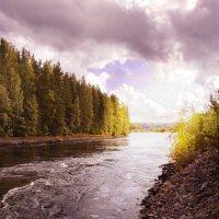 Вуокса-финская сторона реки. :: Валерий Стогов