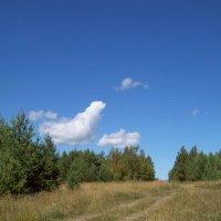 Ещё не осень :: alemigun
