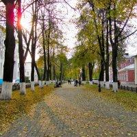 Осень в городе :: Марина Бушуева