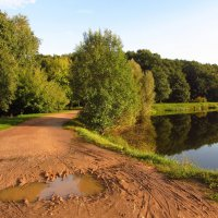 Вечер на пруду IMG_7784 :: Андрей Лукьянов