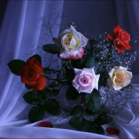 Просто  подарили  розы... :: Валерия  Полещикова