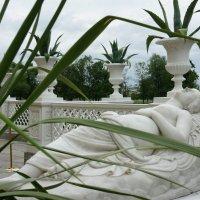 Скульптура  «Спящая Венера». Скульптор  Ц. Баруцци :: Елена Павлова (Смолова)