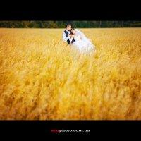 Свадьба в поле :: Дарья Малык