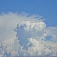 Причудливые формы облаков :: Лидия (naum.lidiya)