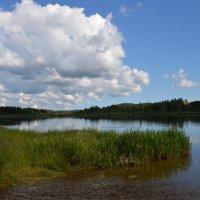 Городищенское озеро :: demyanikita