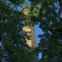 старинная башня :: Геннадий Титоренко