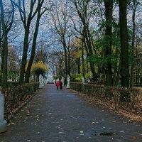 Осенняя пора :: vladimir Bormotov