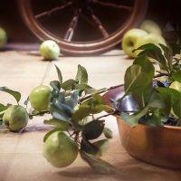 Эх, яблочко, куда ты котишься... :: Bosanat