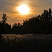 На закате дня :: Татьяна Кретова