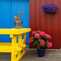 норвежский #multicolor :: Олег Патрин