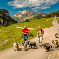 The Alps 2014-Switzerland-Kandersteg 6 :: Arturs Ancans