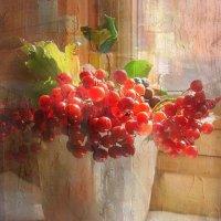 Калина красная и черноплодка :: Aioneza (Алена) Московская