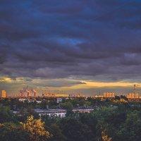 Москва) :: Ксения Базарова