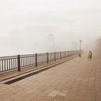 Туманная доброта :: Александр | Матвей БЕЛЫЙ