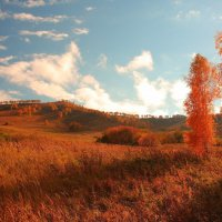 Пожар Осени :: Александр Коваленко